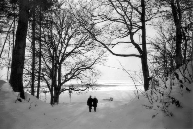 winter (11)