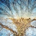 Winter 13 (c) Lomoherz