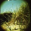 Tag am Meer (1)