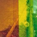 Regenbogen (30)