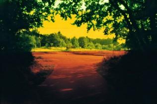 Regenbogen (35)