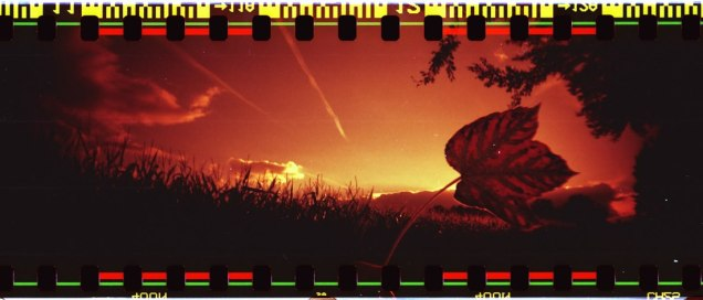 Sprocket Rocket, self-made Redscale (Rossmann 400)