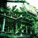 Doppelbelichtung: Laurin Park
