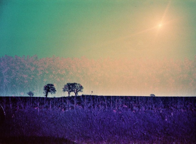 LomoChrome Purple (c) Lomoherz (24)